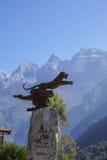 飞跃峡谷的老虎在丽江,云南,中国 图库摄影
