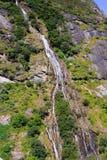 飞跃峡谷的老虎风景 库存图片