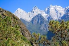 飞跃峡谷的老虎风景 免版税库存图片