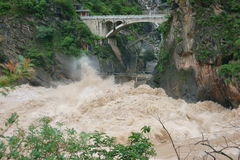 飞跃峡谷的老虎 库存照片