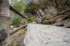 飞跃峡谷的老虎 库存图片
