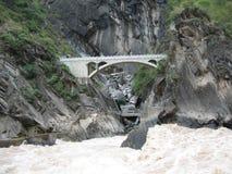 飞跃峡谷的老虎 免版税库存照片