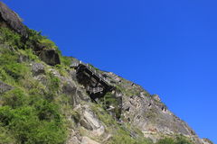 飞跃峡谷的La老虎 免版税库存图片