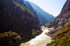 飞跃峡谷香格里拉瓷的老虎 免版税库存图片