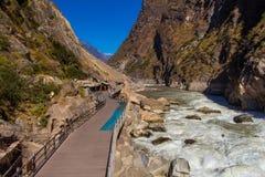 飞跃峡谷香格里拉瓷的老虎 免版税图库摄影
