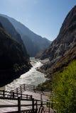 飞跃峡谷香格里拉瓷的老虎 库存照片