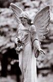 飞过的天使 免版税库存图片
