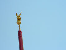 飞过的狮子,威尼斯的标志 免版税库存照片