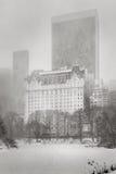 飞雪在中央公园击中NYC -冬天风暴 库存照片