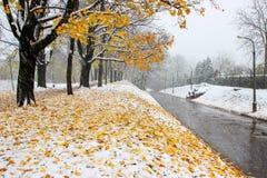 飞雪在城市。重的暴风雪在欧洲。 库存图片
