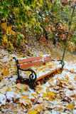 飞雪在城市。重的暴风雪在欧洲。 免版税库存图片