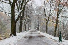 飞雪在城市。重的暴风雪在欧洲。 免版税图库摄影