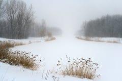 飞雪阴霾湖有薄雾的冬天 免版税库存图片