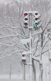 飞雪dc华盛顿 免版税库存照片