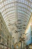 飞鸟雕塑在多伦多Eaton中心 库存照片