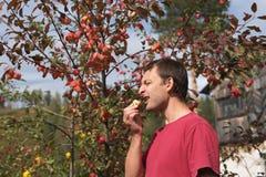 年轻食人一个小红色苹果 免版税库存图片