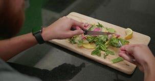 食人的可口鲑鱼排用番木瓜沙拉 股票录像