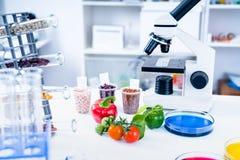 食品供应的化工实验室 食物在实验室,脱氧核糖核酸修改 GMO基因上在实验室修改了食物 免版税库存照片