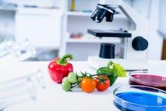 食品供应的化工实验室 食物在实验室,脱氧核糖核酸修改 GMO基因上在实验室修改了食物 图库摄影