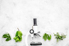 食品分析 杀虫剂释放菜 草本迷迭香,在灰色背景顶视图拷贝空间的薄荷的近的显微镜 免版税库存照片