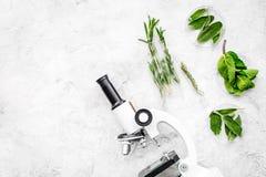 食品分析 杀虫剂释放菜 草本迷迭香,在灰色背景顶视图拷贝空间的薄荷的近的显微镜 库存照片