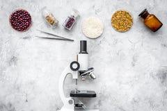 食品安全性 麦子、米和红豆在显微镜附近在灰色背景顶视图copyspace 免版税库存图片
