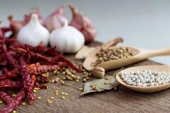 食品成分、干胡椒和红色干辣椒在woode 库存图片