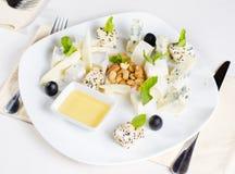 食家乳酪盛肉盘开胃菜 免版税库存图片