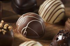 食家花梢黑暗的块菌状巧克力糖果 免版税库存照片