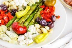 素食开胃小菜 库存照片