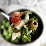 素食沙拉 在葡萄酒生动的颜色的艺术性的神色 免版税图库摄影