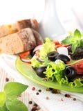 素食沙拉 免版税库存照片