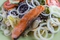 食物三文鱼沙拉 库存照片