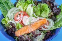 食物三文鱼沙拉 免版税库存图片