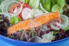 食物三文鱼沙拉 免版税库存照片