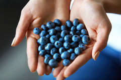 食物健康有机 妇女充分递新鲜的成熟蓝莓 免版税库存图片