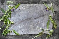 食物在黑暗的板岩的背景草本 库存图片