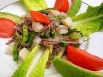 食物墨西哥salpicon 免版税库存照片