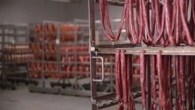 食物存贮,仓库 肉制品,垂悬在机架在肉仓库里,冷冻机的香肠 影视素材