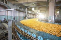 食物工厂制造、工业传送带或者线与甜曲奇饼的准备,面包店生产的过程 免版税库存图片
