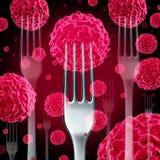 食物巨蟹星座概念 库存图片