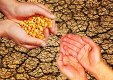 食物帮助 免版税库存图片