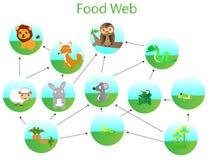 食物循环 免版税库存图片
