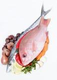 食物新鲜的海运 库存照片