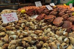 食物新鲜的海运 免版税库存图片