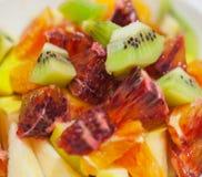 食物果子葡萄桔子瓷沙拉素食主义者 库存照片