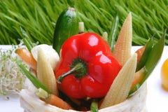 食物格栅蔬菜 免版税图库摄影