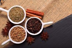 食物概念各种各样的香料小茴香籽、芫荽子、丁香、肉桂条和八角在黑板岩石头和sackclot 免版税库存图片