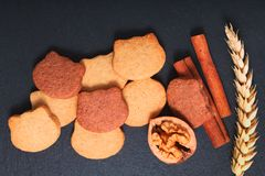 食物概念新鲜斑点的焦点烘烤在黑板岩石头板材的自创有机黄油糖屑曲奇饼两口气猫形状 库存照片