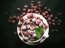 食物樱桃 库存照片
